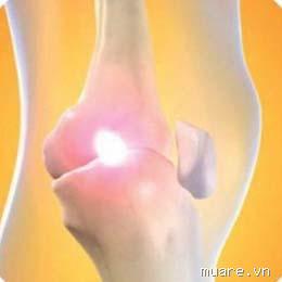 Thuốc trị đau khớp xương Glucosamine