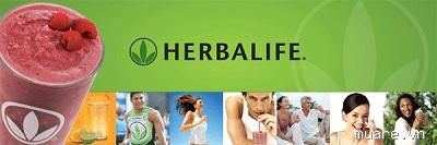 herbalife product information 1280718695